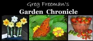 Greg Freeman's Garden Chronicle hosted by SouthernEdition.com